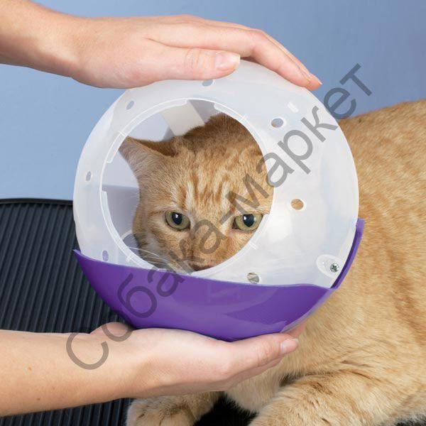 Намордник своими руками для кота